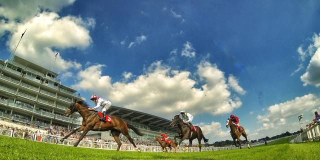 Epsom Picture
