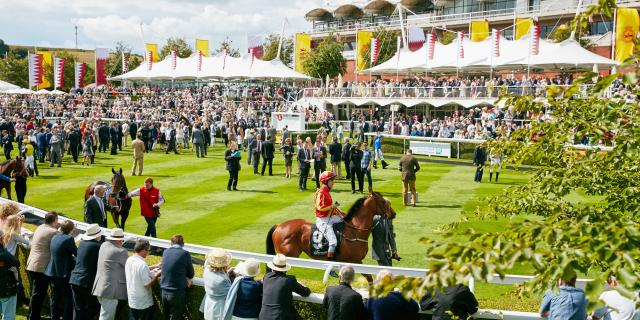 Goodwood QGF Parade Ring