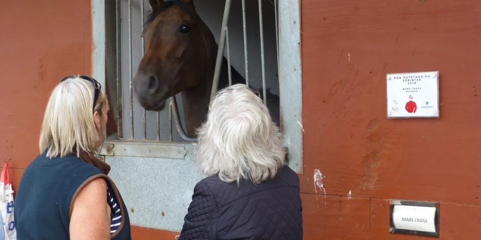 Stable Visit Michael Dods